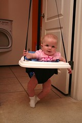 The Laundry Seat