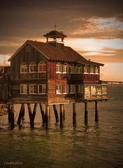 The Pier Cafe by the San Diego Bay (crashmattb) Tags: california restaurant cafe sandiego westcoast seaportvillage canons2is platinumphoto anawesomeshot diamondclassphotographer thesandiegoist