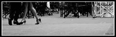 """""""Balada para un loco"""" (n&s I Photography) Tags: ltytr2 ltytr1 ltytr3 ltytr4"""
