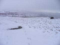 Path Under Snow