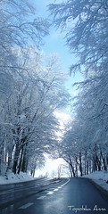 Winter in Spring (anka.anka28) Tags: world blue winter sky white snow tree nature grey poland polska trekker mywinners anawesomeshot platinumheartaward theperfectphotographer goldstaraward worldtrekker