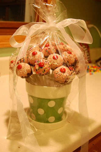Cupcake Pop Bouquet Wrapped