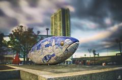 The Fish (Alessandro Giorgi Art Photography) Tags: fish statue statua belfast ireland irlanda irish irlandese north nord square colors colori piazza sky nuvole cielo clouds buildings nikon d7000 travel viaggio viaggiare trip