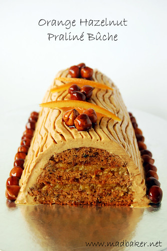 Orange Hazelnut Praline Bûche