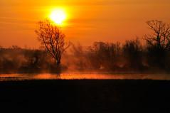 [フリー画像] [自然風景] [朝日/朝焼け] [霧/靄]        [フリー素材]
