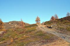 Panoramaweg (Heidadorf Visperterminen) Tags: berge zermatt matterhorn bergsee wandern heida wanderungen wein saasfee bietschhorn visperterminen brchen beitschhorn heidadorf