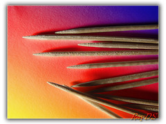 Toothpicks - Stuzzicadenti (RayDS) Tags: wood light macro colors paper photo toothpick stuzzicadenti rayds platinumphoto