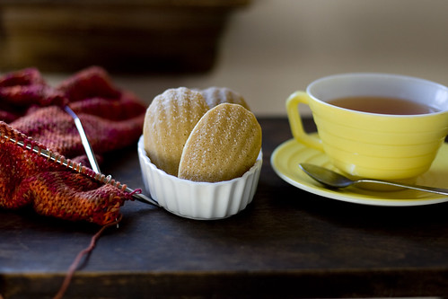 Madeleines and Tea and Knitting