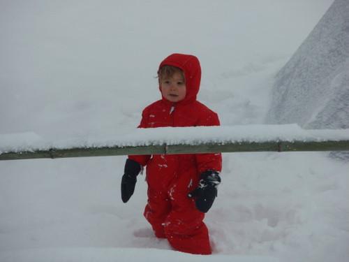 angus_snowsuit_1
