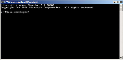 Standard DOS Prompt