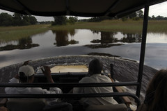 high water levels in Okavango Delta
