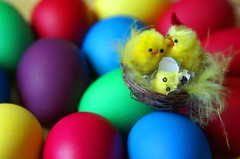Happy Easter  !! (ANDIFOTO) Tags: holiday colour chicken easter russia moscow egg shell russian fuzz cubism happyeaster  mywinners andreyseregin ysplix  andifoto