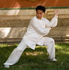 24 Taiji Quan = 二十四式太极拳