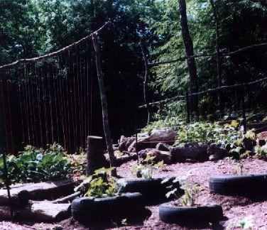 Garden 1998