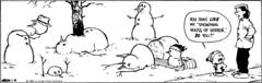 Calvin & Hobbes (26-Dec-1989) () Tags: death snowman cartoon philosophy calvin hobbes creep morb existencialism calvinsmom