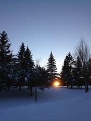 Sunset (Espykrelle) Tags: soleil sun sunset coucherdesoleil paysage landscape trees arbres parc park neige snow winter hiver nature ciel sky extérieur outside iphone montreal montréal urbannature natureurbaine 7dwf