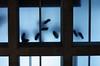 glass ceiling/glass floor (helen sotiriadis) Tags: sky building feet public glass museum architecture canon fun published floor athens ceiling greece transparent acropolis canonef50mmf14usm ακρόπολη bernardtschumi αθήνα theacropolismuseum canoneos40d toomanytribbles τομουσείοτησακρόπολησ