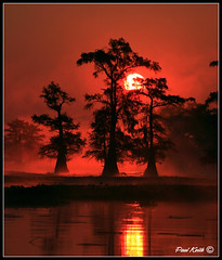 Halloween on Caddo Lake (SisPau Images) Tags: travel trees red lake nature water fog outdoors dawn landscapes scary flickr photographer scenic images professional photograph cypress caddo holloween caddolake blueribbonwinner supershot instantfave flickrsbest paulkeith excellentphotographer excapture copyrightedbypaulrkeithallrightsreservednounauthorizedusageallowed wwwpaulkeithphotocom sispau