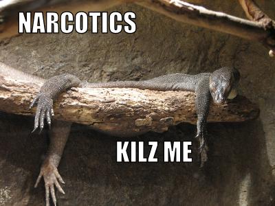 Narcotics Kilz Me
