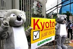 กรีนพีซพาหมีโคอาล่าเรียกร้องหน้าสถานทูตออสเตรเลีย