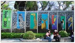 () Tags: zoo taipei