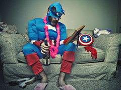 Something about superhero's, Muppets, whiskey, stuffed animals and pink slippers (062/365) (wiseacre photo) Tags: portrait man costume interestingness missing sad empty explore superhero depressed captainamerica dressed betterthangood