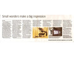 2008 SCMP Clara Chow - Small wonders make big impression