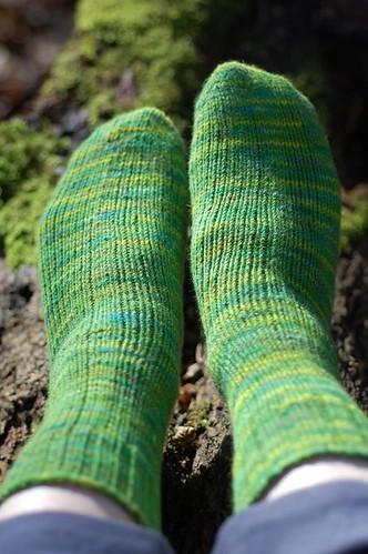 Treefrog socks