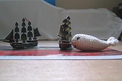 White whale 4