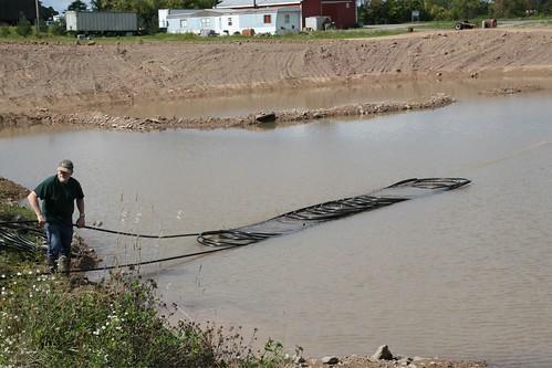 Pond Loops