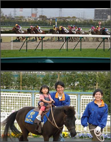 はじめての乗馬 the first horse riding-桜花賞の日-CIMG0323