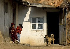 Life in the countryside North Korea (Eric Lafforgue) Tags: poverty life voyage street travel dog chien house playing color colour horizontal kids del children de countryside asia republic kim north evil scene korea du daily il east peoples korean socialist inside asie peninsula maison rue 2008 coree democratic couleur axis nord dictateur norte vie jong koreans ideology dictatorship  sung  corea dprk paysan  quotidienne juche pauvrete stalinism coleur 5081 dictature    coreadelnord  northcorea stalinisme rdpc    demokratischevolksrepublik