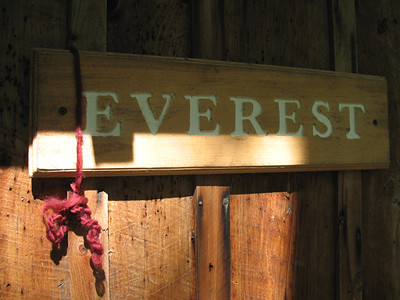 Everest_Squam_2011