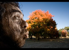 Wooden Face (Josh Sommers) Tags: wood man tree texture face wooden head profile manipulation carving lips bark dork soe weekendamerica abigfave