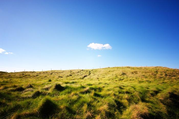 Sunlit Grassy Slopes