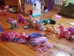 Pony Lina