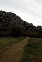 El Camino (antes)