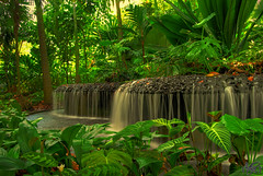 My Dream Garden ([ tha ] aka mr. wagyu) Tags: garden waterfall explore botanicgarden hdr tha blueribbonwinner photomatix supershot abigfave anawesomeshot impressedbeauty favoritegarden firsttheearth nikond40x d40x fiveflickrfavs top30green excapture theperfectphotographer thatjahjadi