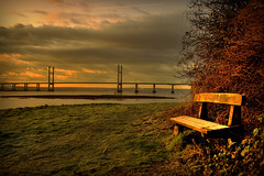 Return to my Favourite Bench
