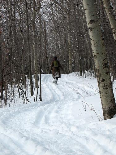snowshoewoods