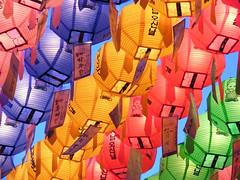 nightlanterns4 (anjeelou) Tags: color colorful buddha buddhism korea seoul lanterns buddhasbirthday lotuslantern lotuslanternfestival buddhasbirthdayfestival koreafestival