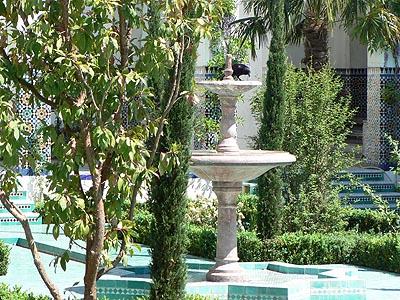 corbeau sur la fontaine.jpg