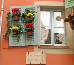 Rue Obscure - Carriera Scura  EXPLORE 7 August 2008 (Micheo) Tags: window ventana ventanas villefranche maceta villefranchesurmer postigo micheo