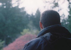 35mm Film Texture Film Dan Oregon 35mm