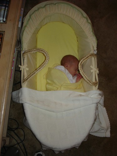 Oliver in his Moses basket