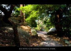 Ku-ring-gai Chase National Park (CrazyNotion (wandering and wondering)) Tags: nationalpark australia nsw chase soe kuringgai blueribbonwinner westhead mywinners colorphotoaward bestofaustralia bensharif