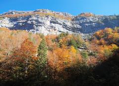 The Cliffs At Pont de Goule Noir (fenlandsnapper) Tags: autumn france autumncolours vercors sigma1020mmf456exdc