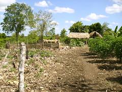 Proyecto Rio Sanate