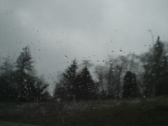 Looking Glass Storm (hangmansgrimgrin) Tags: storm cloudy rainy treeline