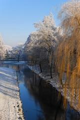 2007_12_22DSC_9834_d01 (iVOMiMiBoRE) Tags: trees winter snow holland tree netherlands nijmegen frost nederland frostedtrees winterinholland frozentrees malvert winterinthenetherlands